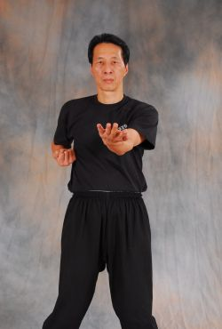 Sam Kwok doing a Wing Chun block