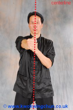 wing chun punching in centerline image