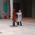 ip chun on a wooden dummy.jpg