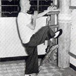 ip man dummy kick.jpg