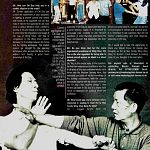 martial arts illustrated wing chun.jpg