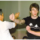 ip chun biu sau against punch