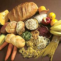 Carbs for training martial arts