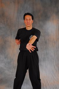 Samuel Kwok Wing Chun technique, palm strike - Ju Cheung